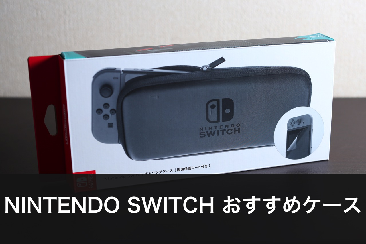 170303 switch carrying case 001